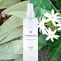 European Spa Source Eucalyptus + Jasmine ShowerSpa Mist