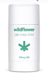 Wildflower Healing Stick 500mg CBD 2.5 oz